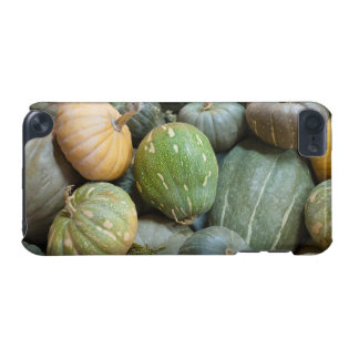 Assorted pumpkins iPod touch (5th generation) cover