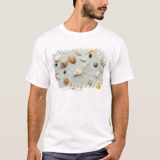 Assorted seashells on blue background T-Shirt