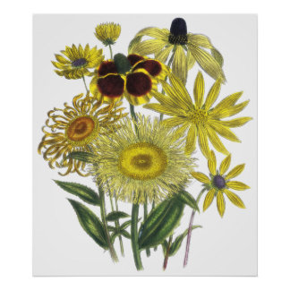 Assorted Yellow Flowers Vintage Artwork Poster
