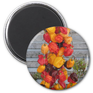 Assortment of colorful chilli peppers 6 cm round magnet