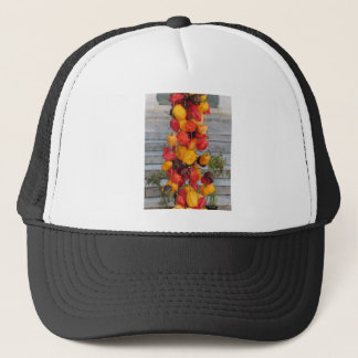 Assortment of colorful chilli peppers trucker hat
