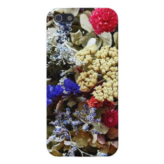 Assortment Of Dried Flowers iPhone 5/5S Case