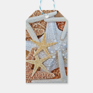 Assortment of Starfish Gift Tags