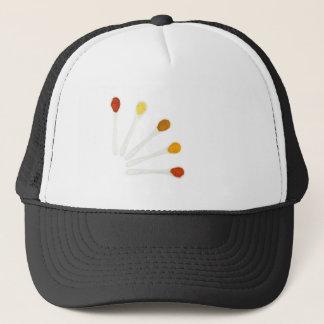 Assortment seasoning spices on porcelain spoons trucker hat