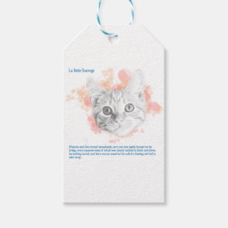 Asta - Malcolm's Daemon from His Dark Materials Gift Tags