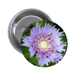 Aster Blue Daisy Pinback Button