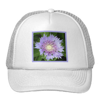 Aster Blue Daisy Hat