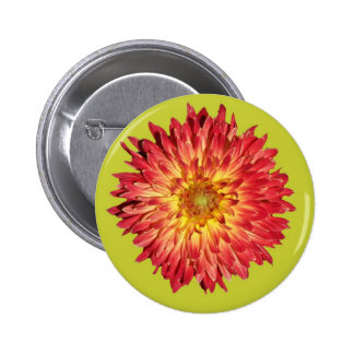 aster cutout lime buttons