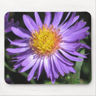 Aster Mousepad