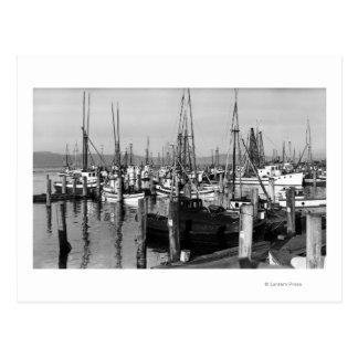Astoria, Oregon Waterfront View of Fishing Fleet Postcards