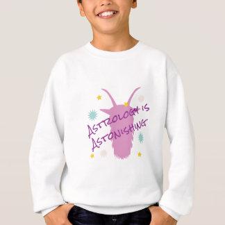 Astrology Astonishing Sweatshirt