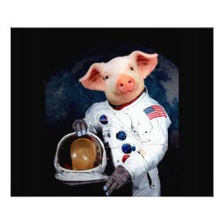 Astronaut pig - space astronaut art photo