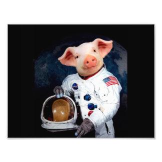 Astronaut pig - space astronaut photograph
