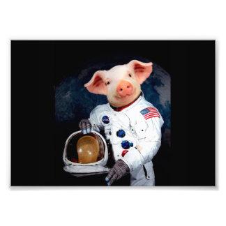 Astronaut pig - space astronaut photographic print