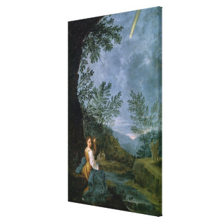 Astronomical Observations Stretched Canvas Prints