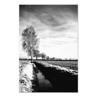At the Birken Photographic Print
