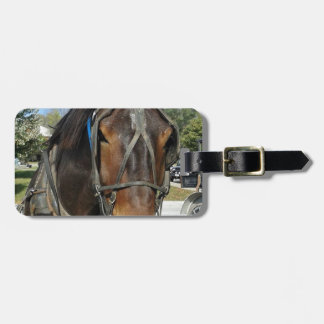 At the Library, Amish Horse and Buggy Travel Bag Tag