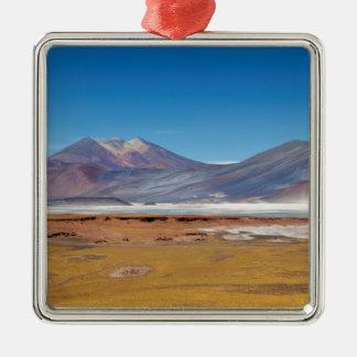 Atacama salt lake Silver-Colored square decoration