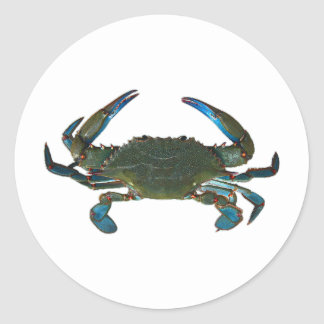 Atlantic Blue Crab Logo Round Sticker