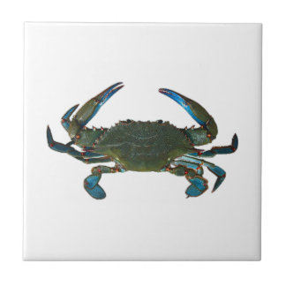 Atlantic Blue Crab Logo Tile