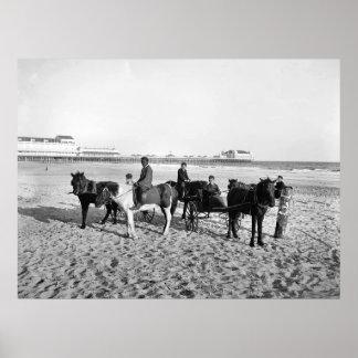Atlantic City New Jersey Pony Rides Poster