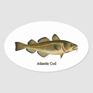 Atlantic Cod Logo Oval Sticker