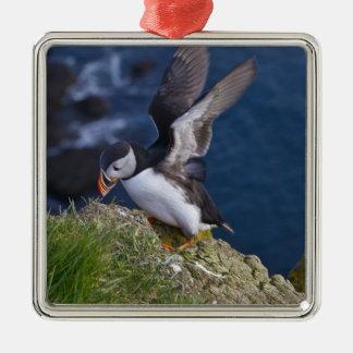 Atlantic Puffin (Fratercula arctica) 2 Metal Ornament