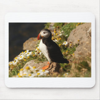 Atlantic Puffin Mouse Pad