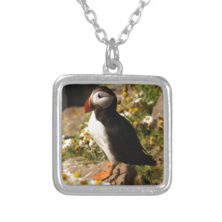 Atlantic Puffin Silver Plated Necklace