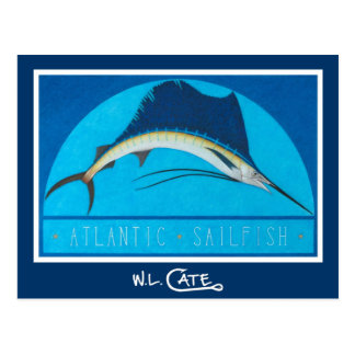 Atlantic Sailfish Postcards