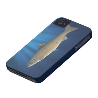 Atlantic Salmon- BlackBerry Bold Cover