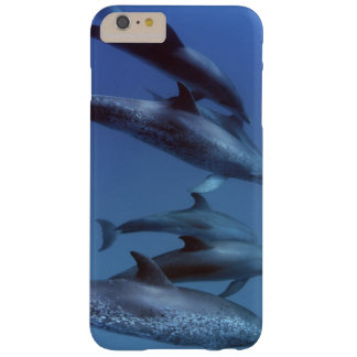 Atlantic spotted dolphins. Bimini, Bahamas. Barely There iPhone 6 Plus Case