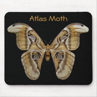 Atlas Moth Mousepad