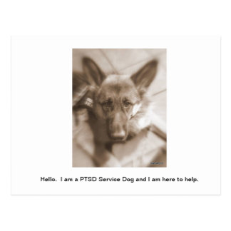 Atlas Service Dog Postcard