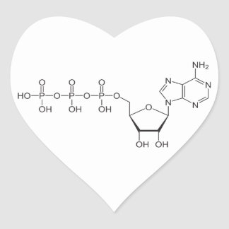 ATP molecule Heart Sticker