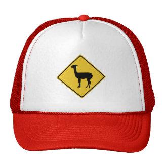 Attention Llamas, Traffic Sign, Argentina Mesh Hats