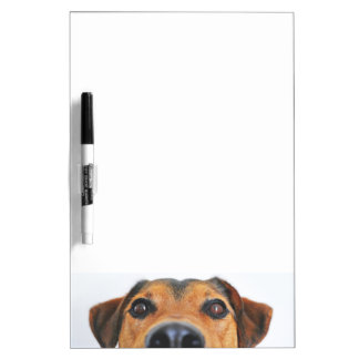 Attentive dog's nose Dry-Erase board