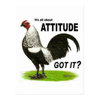 Attitude:  Got It? Postcard