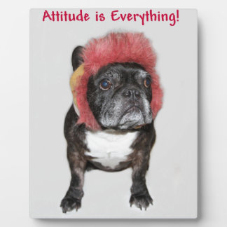 attitude is everything funny bulldog with hat photo plaques