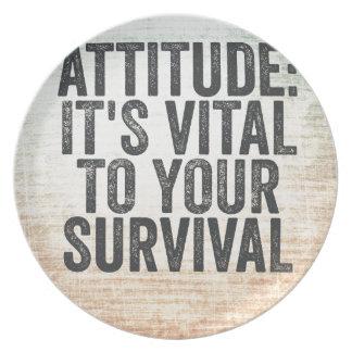 Attitude Plate