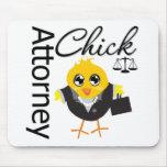 Attorney Chick v2
