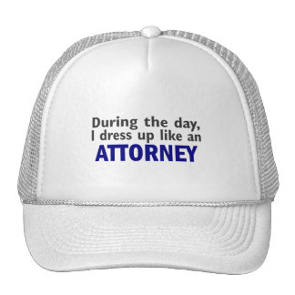 Attorney During The Day Mesh Hat