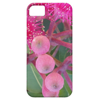 Attractive Australian Pink Gum Flower Design Barely There iPhone 5 Case