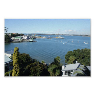 Attractive Harbour With Number Of Boats Print