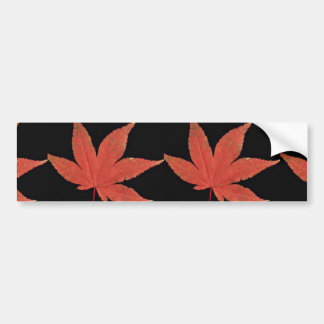 Attractive Japanese maple leaf Bumper Stickers