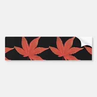 Attractive Japanese maple leaf Bumper Sticker