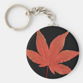 Attractive Japanese maple leaf Key Chain