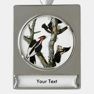 Aububon's Ivory-billed Woodpecker in Ash tree Silver Plated Banner Ornament