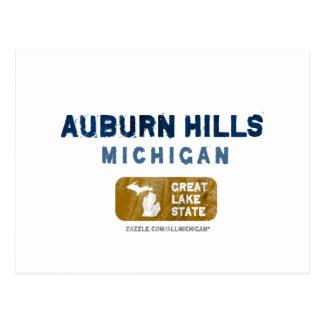 Auburn Hills Michigan Great Lake State Postcard