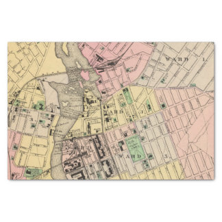 Auburn, Lewiston Tissue Paper